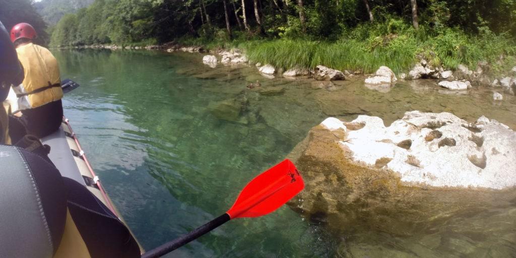 paddle-forgotten