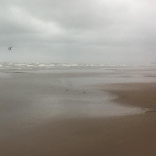 Sultan-quaboos-oman-walk-beach-3