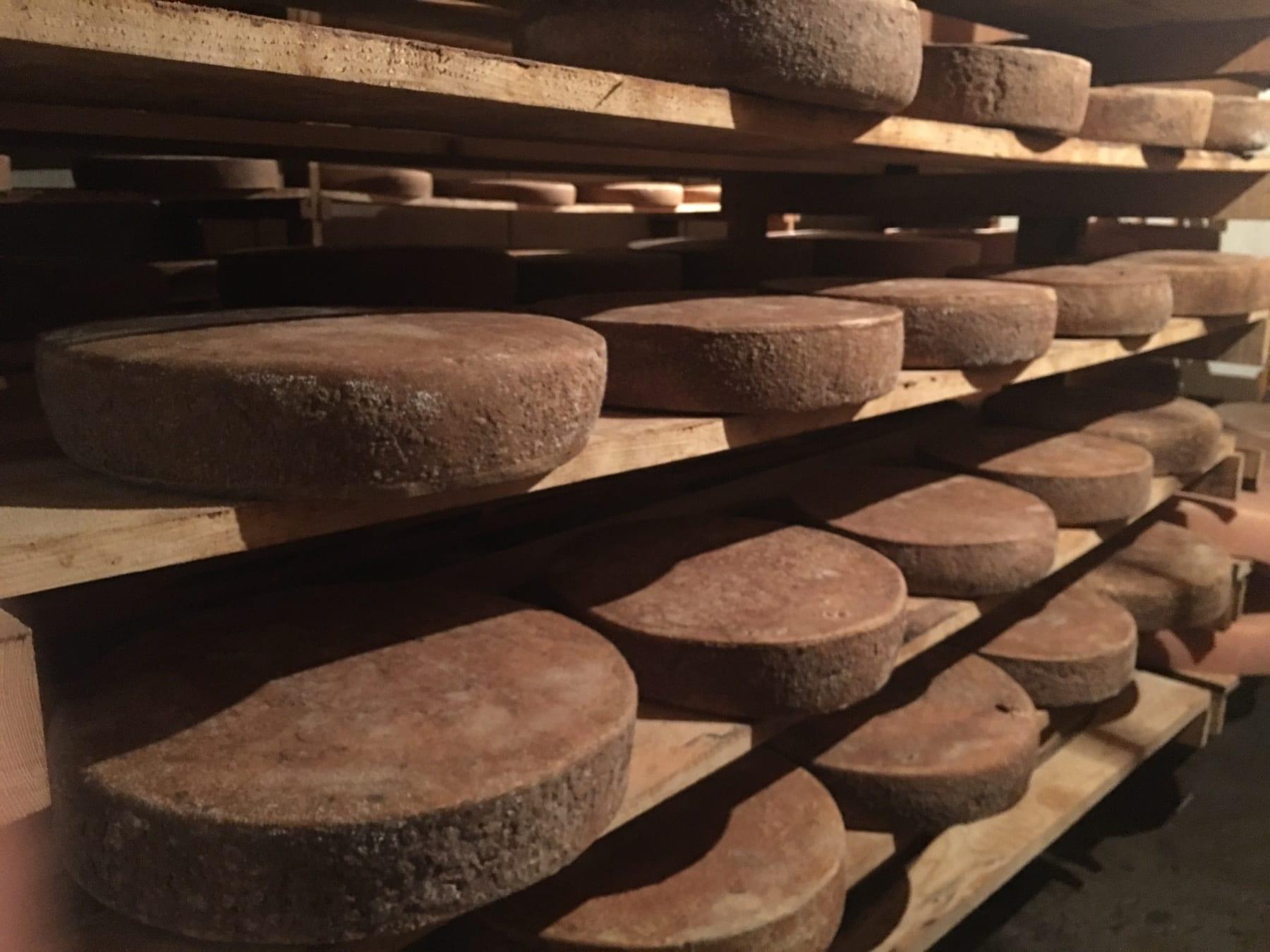 Swiss Cheese Made in Bosnia and Herzegovina 19